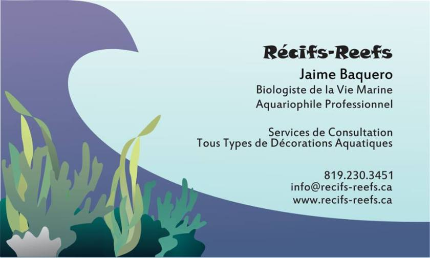 Récif-Reef French Business Card
